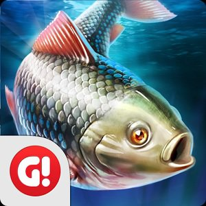 Top Developer Gone Fishing: Trophy Catch