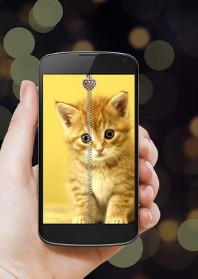 Kitty Zipper Screen Lock